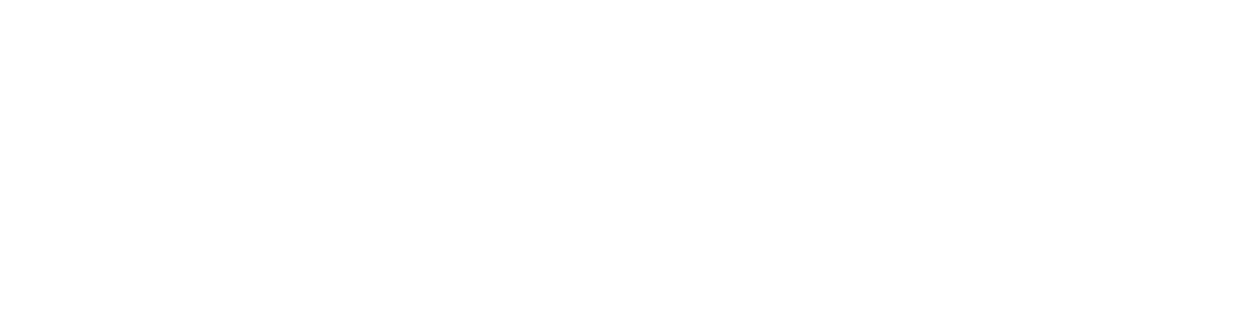 LoomView Institute for Business Growth